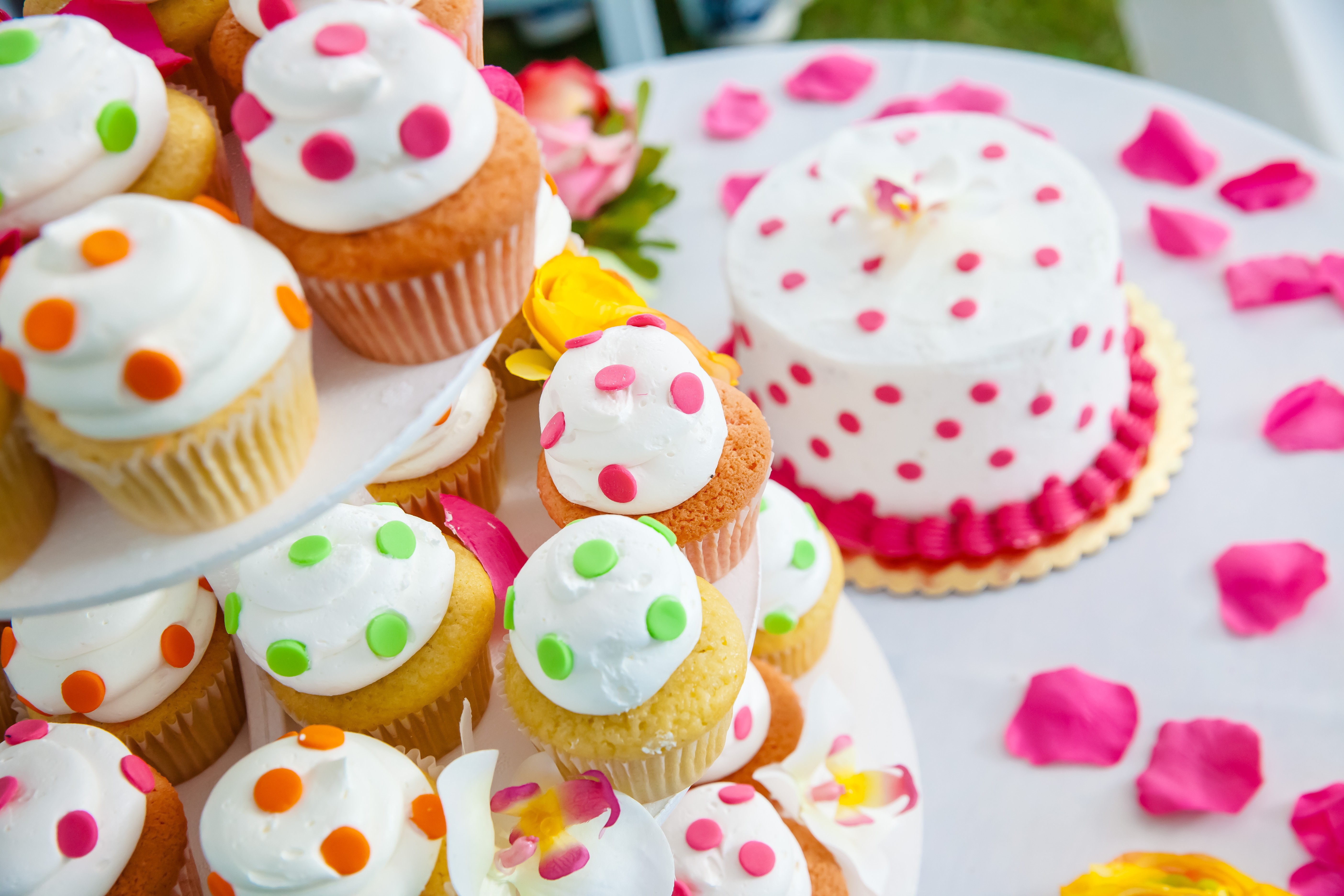 Colorful wedding cupcakes and cake